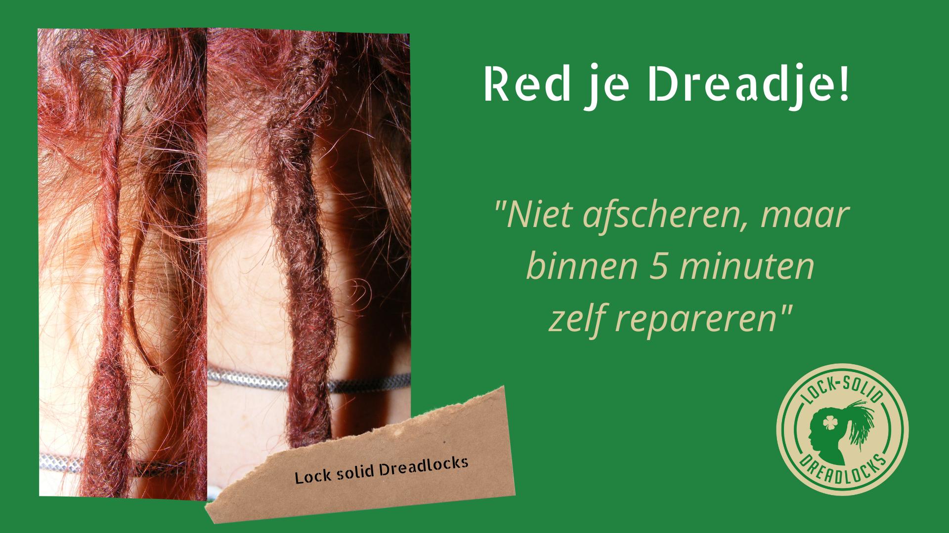 Red je dreadje dreadlock training - dreadkapper rotterdam - Lock Solid Dreadlocks - Alles Voor Dreads - Solid Locks Academy